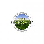 Logo_fin_curvas